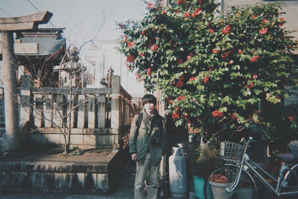 山茶花いっぱい咲いてた